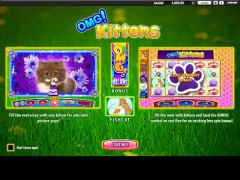 OMG Kittens - William Hill Interactive